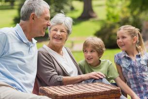 Smiling senior couple and grandchildren at parkの写真素材 [FYI00000144]