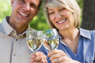 Smiling couple toasting wine glassesの写真素材 [FYI00000333]