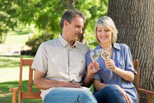 Couple toasting wine glasses in parkの写真素材 [FYI00000340]