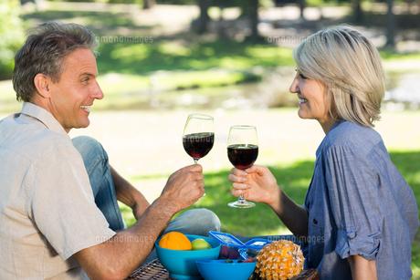 Couple toasting wine in parkの素材 [FYI00000346]