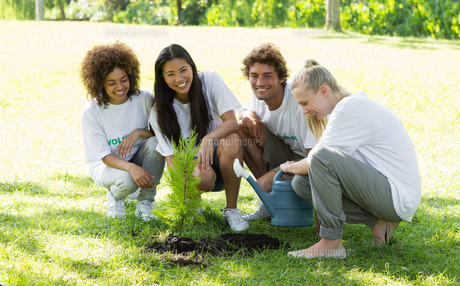 Happy volunteers planting in parkの素材 [FYI00000371]
