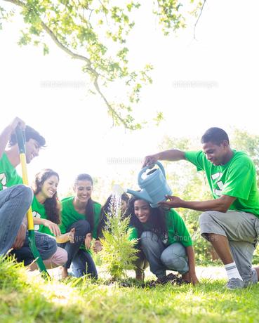 Environmentalists watering plantの写真素材 [FYI00000373]