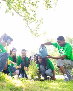 Environmentalists watering plantの素材 [FYI00000373]