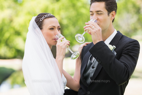 Newlywed couple drinking champagneの写真素材 [FYI00000740]