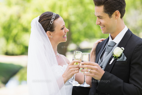 Newlywed couple toasting champagne in parkの写真素材 [FYI00000741]