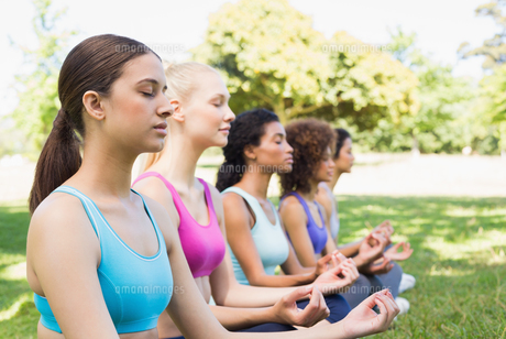 Friends meditating in lotus positionの写真素材 [FYI00000798]