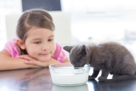 Girl looking at kitten drinking milk from bowlの写真素材 [FYI00000891]