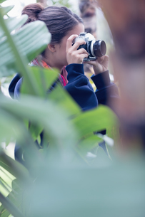 Young woman taking a picture in a wooded areaの写真素材 [FYI00000932]
