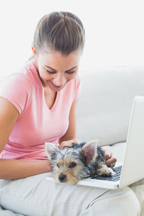 Pretty woman using laptop with her yorkshire terrierの写真素材 [FYI00001075]