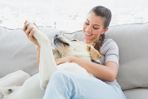 Happy woman petting her yellow labrador on the couchの写真素材 [FYI00001080]