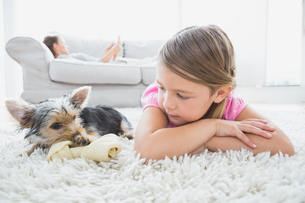 Little girl lying on rug with yorkshire terrierの素材 [FYI00001083]
