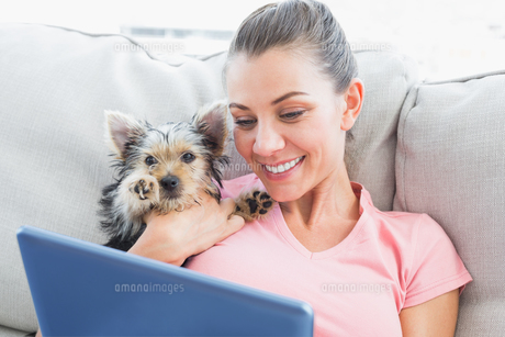 Pretty woman using tablet with her yorkshire terrierの素材 [FYI00001085]
