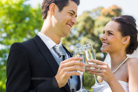 Newlywed toasting champagne flutes at parkの写真素材 [FYI00001097]