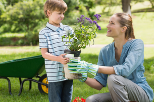 Mother and son gardeningの写真素材 [FYI00001166]