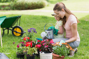 Mother and daughter engaged in gardeningの写真素材 [FYI00001168]