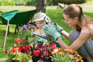 Mother and daughter watering plants at gardenの写真素材 [FYI00001191]