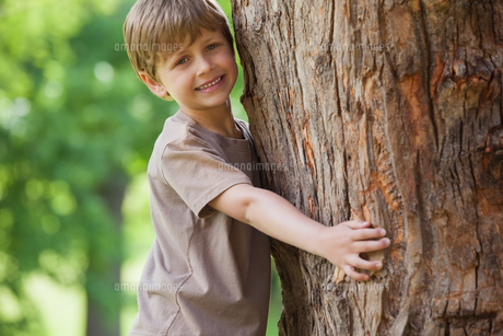 Young boy hugging a tree at parkの素材 [FYI00001227]