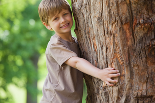Young boy hugging a tree at parkの写真素材 [FYI00001227]