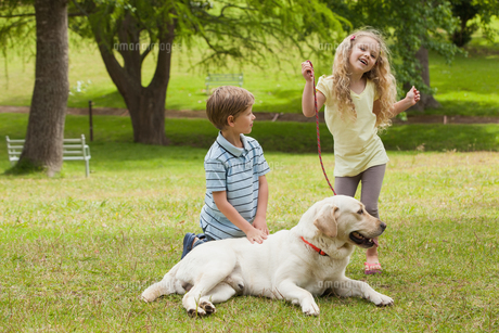 Two happy kids with pet dog at parkの写真素材 [FYI00001229]
