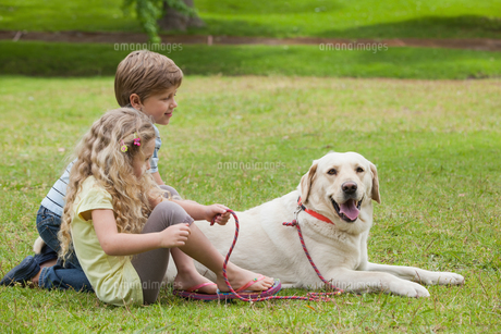 Two kids with pet dog at parkの写真素材 [FYI00001230]