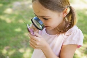 Girl examining butterfly with magnifying glass at parkの写真素材 [FYI00001251]