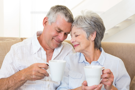 Senior couple sitting on couch drinking coffee touching headsの写真素材 [FYI00001297]