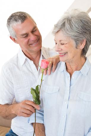 Senior man offering a rose to his partnerの写真素材 [FYI00001310]