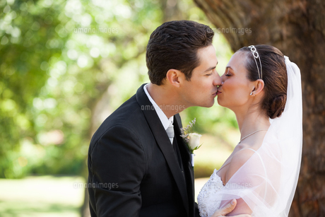 Romantic newlywed couple kissing in parkの写真素材 [FYI00001369]