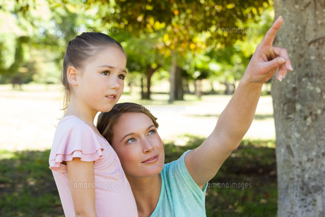 Mother pointing at something besides daughter at parkの写真素材 [FYI00001399]