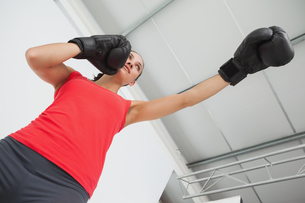 Determined female boxer focused on training at gymの写真素材 [FYI00001474]