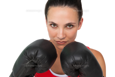 Close-up portrait of a determined female boxerの写真素材 [FYI00001475]