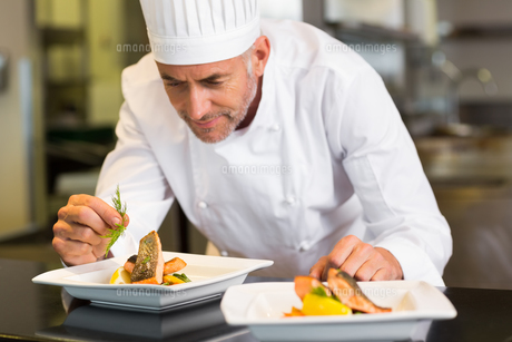 Concentrated male chef garnishing food in kitchenの写真素材 [FYI00001481]