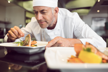 Concentrated male chef garnishing food in kitchenの写真素材 [FYI00001490]