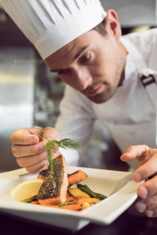 Closeup of a concentrated male chef garnishing foodの写真素材 [FYI00001498]
