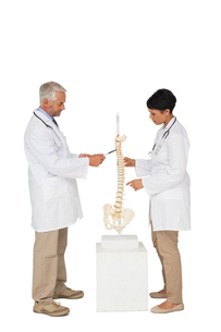 Side view of two doctors pointing at skeleton modelの素材 [FYI00001656]