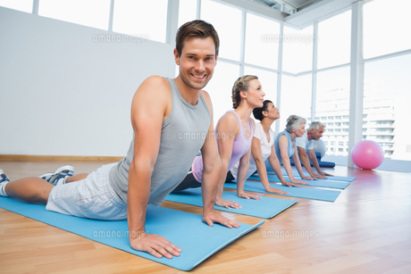 Group doing cobra pose in row at yoga classの写真素材 [FYI00001789]