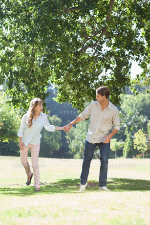 Carefree couple standing in the park holding handsの写真素材 [FYI00001939]