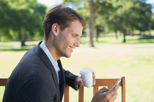 Casual businessman texting on phone on park benchの写真素材 [FYI00001944]
