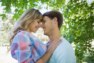 Cute couple smiling and hugging in the parkの写真素材 [FYI00001973]