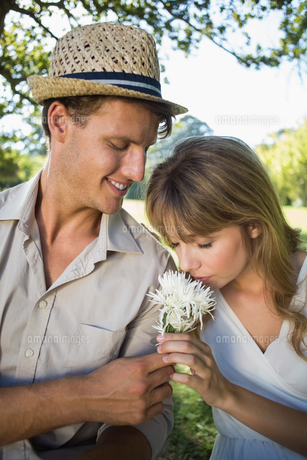 Smiling man offering his girlfriend a white flower in the parkの写真素材 [FYI00001987]
