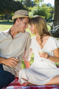 Cute couple drinking white wine on a picnicの写真素材 [FYI00001993]