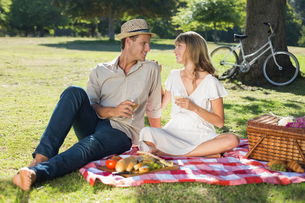 Cute couple drinking white wine on a picnicの写真素材 [FYI00001994]