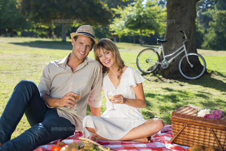 Cute couple drinking white wine on a picnicの写真素材 [FYI00001998]