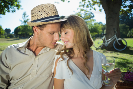 Cute couple drinking white wine on a picnic smiling at each otherの写真素材 [FYI00002018]