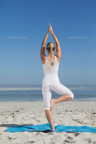 Blonde woman standing in tree pose on beachの素材 [FYI00002043]