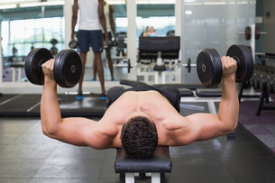 Shirtless bodybuilder lying on bench lifting heavy dumbbellsの写真素材 [FYI00002258]