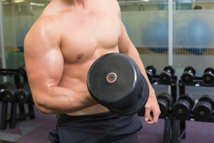 Shirtless bodybuilder lifting heavy black dumbbellの写真素材 [FYI00002259]