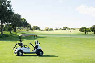 Golf buggy with no one aroundの写真素材 [FYI00002263]