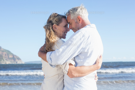 Happy couple on the beach touching facesの写真素材 [FYI00002279]