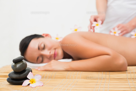 Beautiful brunette enjoying a flower back massageの写真素材 [FYI00002429]